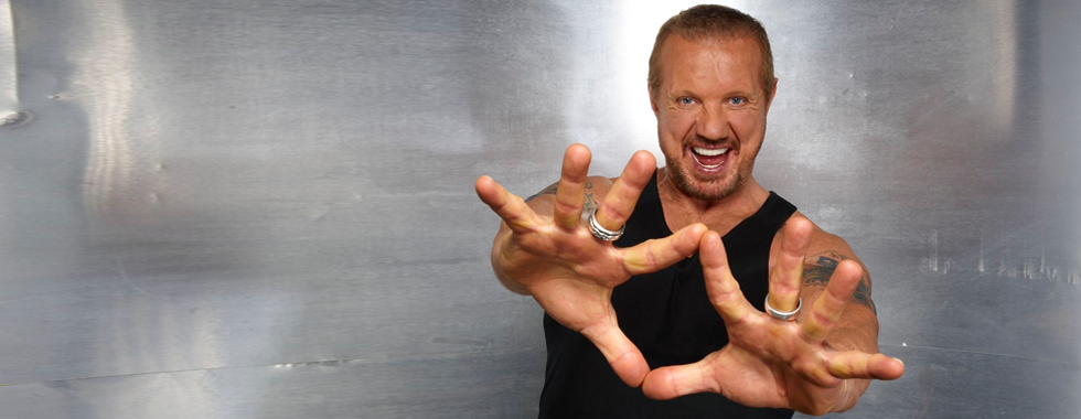 Gallery For > Ddp